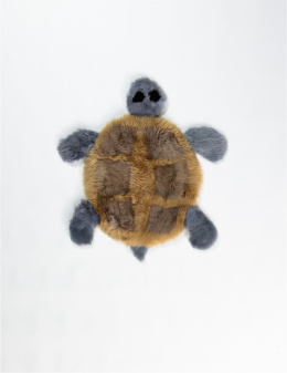 Turtle / Gray-Brown
