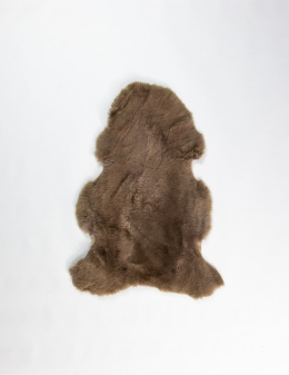 Colored Sheepskin / Beige-Brown